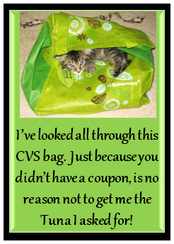 Cat in a CVS Bag